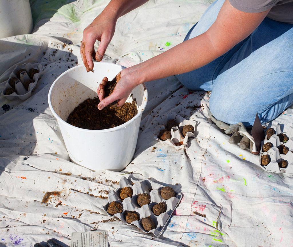 Envirohub Seed Bomb Workshop