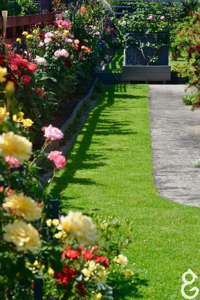 garden Helen and Barry Green