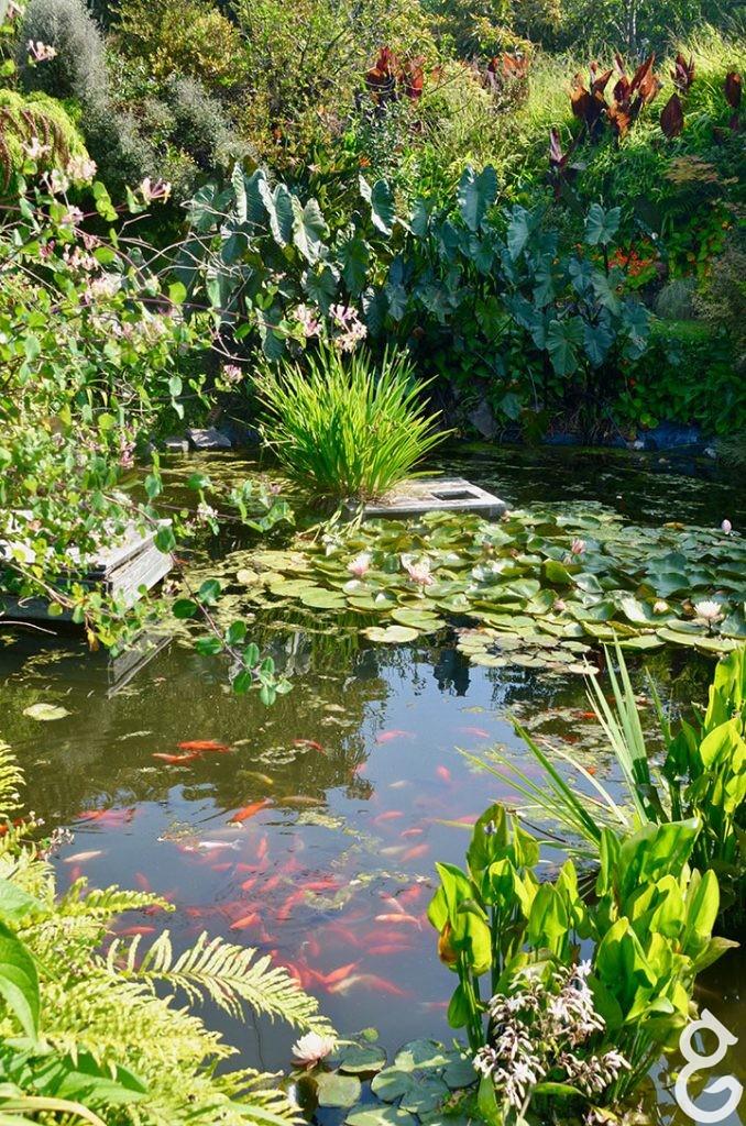 garden Peter Ferris
